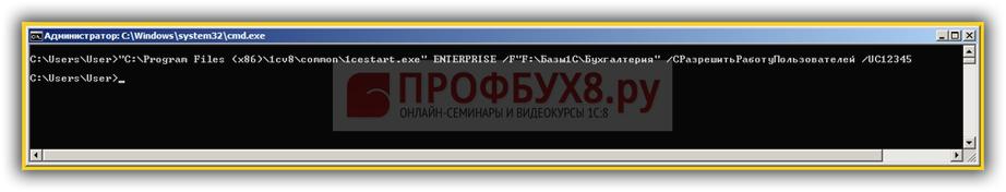 запуск 1С из командной строки с указанием кода разрешения
